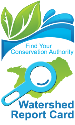 find your watershed report card